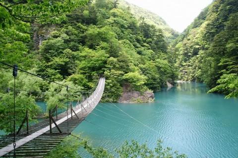 s-新緑の寸又峡 夢の吊橋