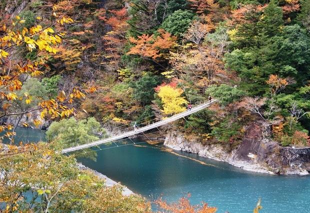ようこそ水と森の番人が創る癒しの里「川根本町」写真イメージ